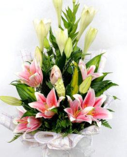 gio-hoa-tulip-dep-nhat-tphcm