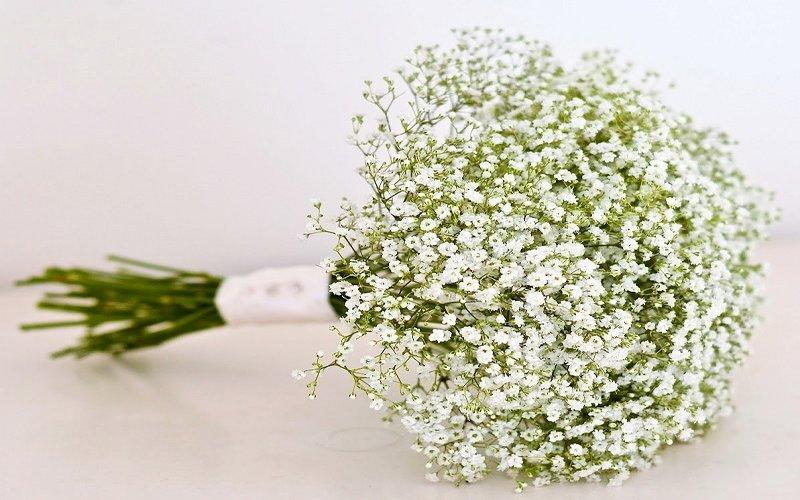 shop hoa tươi quận gò vấp đẹp nhất